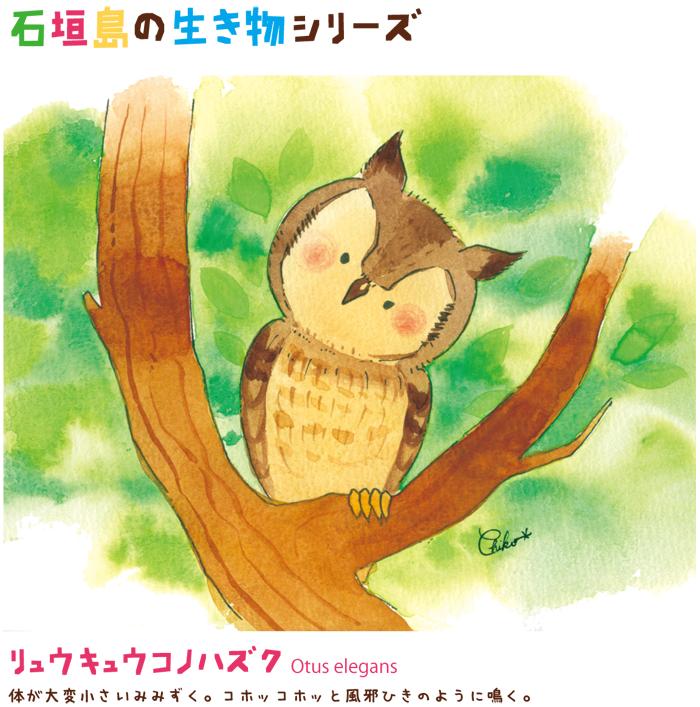 石垣島の動物シリーズ
